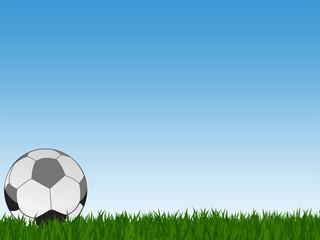 Football pitch grass