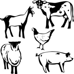 Five stylized vector illustrations of barnyard animals