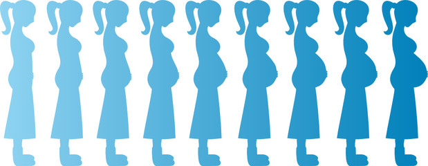 Pregnant Woman Months 1-9