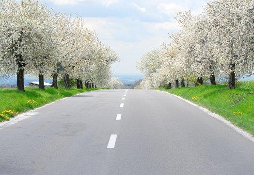 route printemps