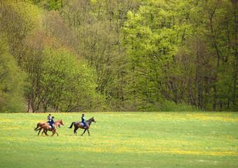 Foto op Plexiglas Paardrijden Ausritt