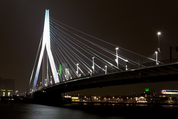 Foto auf Gartenposter Schwan Night view of Erasmus Bridge in Rotterdam