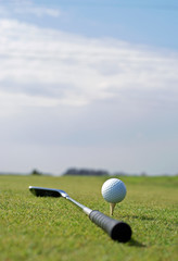 Golf ball in tall green grass set against blue sky
