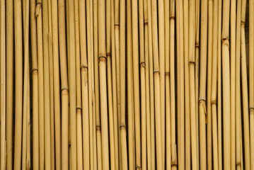 background of bamboo sticks