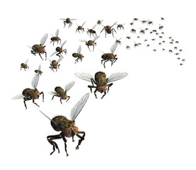 Swarm of Flies - 3D render