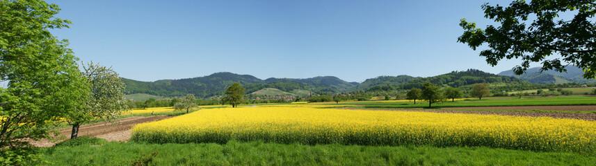 Ohlsbach - Schwarzwald