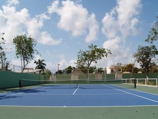 Tuinposter Olijf court de tennis