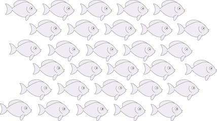 groupe de poissons gris