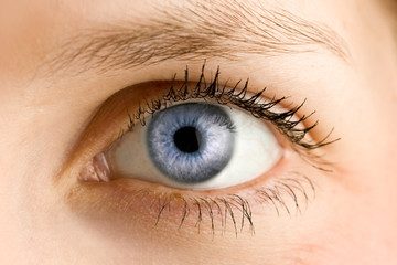 Obraz Auge - Blau - fototapety do salonu