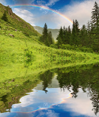 Fototapete - Rainbow over forest