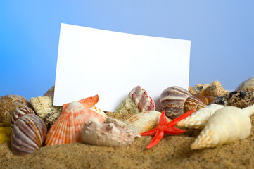 Notecard on Beach