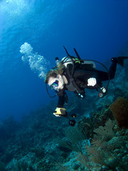 Underwater Photographer swimming over a Reef