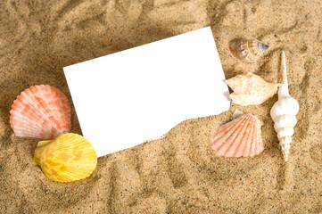 Notecard on Beach