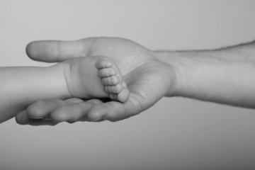 babyfuß in papas hand