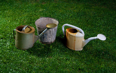 Watering cans and a bucket