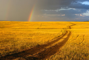 Road, yellow hills and rainbow.