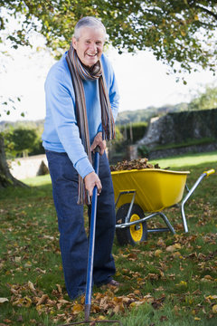 Senior man collecting leaves