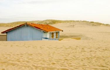 cabane dans les dunes Wall mural
