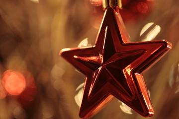 Weihnachtsstern - christmas star