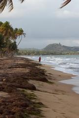 Puerto Rico Scenics