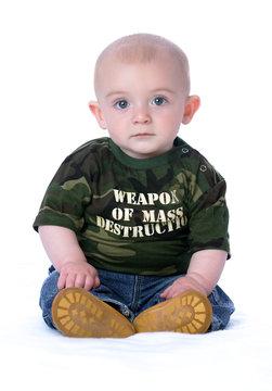 weapon of mass destruction WMD