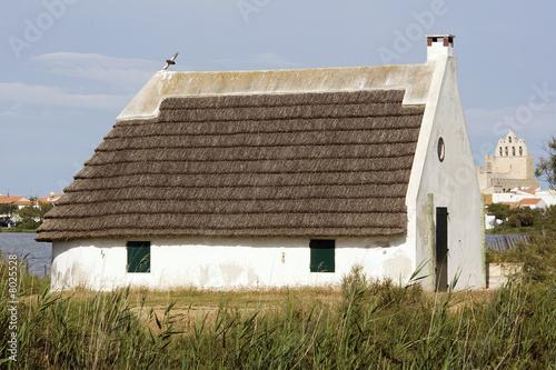 Maison typique de camargue photo libre de droits sur la for Maison de camargue