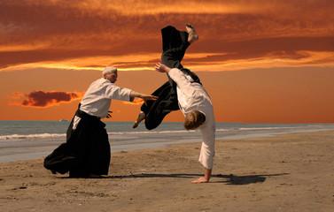 Garden Poster Martial arts aikido au couché de soleil