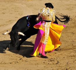 Wall Murals Bullfighting Matador & Bull