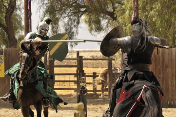 Knights Jousting Wall mural