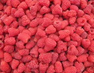 Raspberries perfect