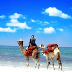 Tuinposter Tunesië Kamel reiten