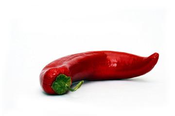 Single red pepper