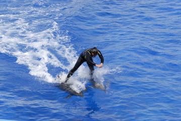 Sui delfini