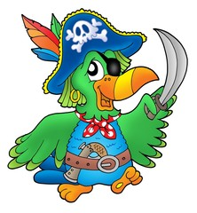 Fotorolgordijn Piraten Pirate parrot