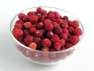 Fototapeta wild strawberries obraz