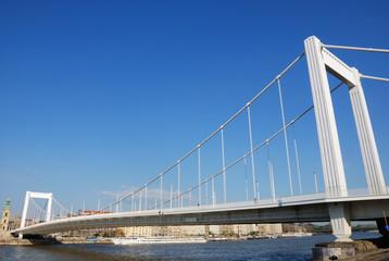 Elizabeth bridge 1.
