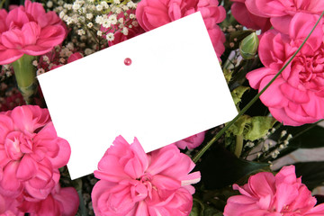 Pink carnations with empty gift tag