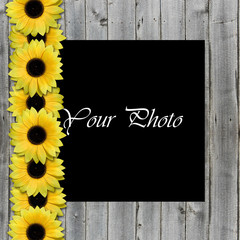 beautiful framework for photo with sunflowers border