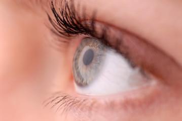 Auge Detail