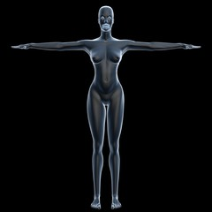 x-ray female body