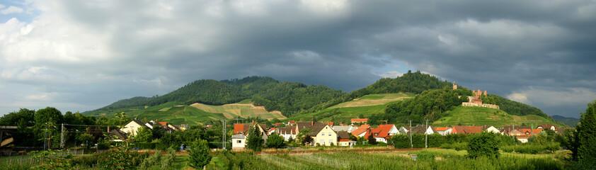 ...Schwarzwald....