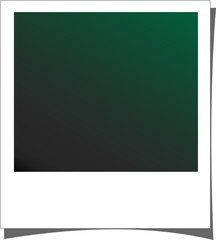 polaroid - verde scuro