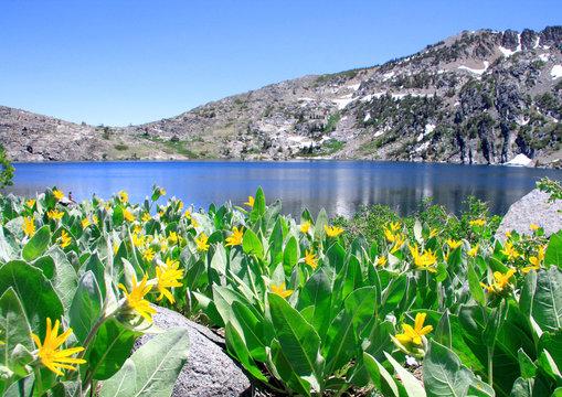 Lake Winnemucca