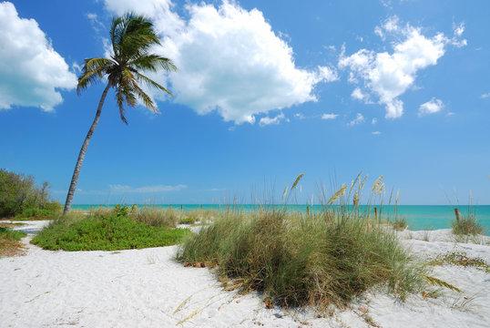 Beach on Captiva Island, Gulf Coast of Florida