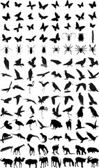 Many silhouettes of different animals and insects
