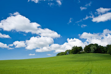 blue azure sky over a green field