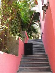 Escalier entre des murs roses, Brésil.