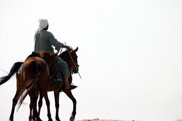 Arab Riding Horse