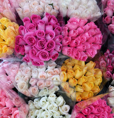Variety of Vibrant Bouquets of Roses at Florist Shop