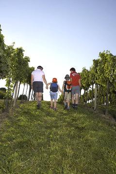 Familien im Weingarten